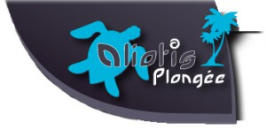 Logo Aliotis site